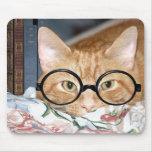 Gato con los vidrios y los libros alfombrilla de ratón