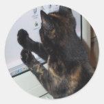 Gato con PC Etiqueta Redonda