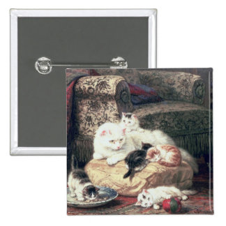 Gato con sus gatitos en un amortiguador pin cuadrado