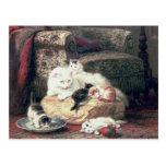 Gato con sus gatitos en un amortiguador postal