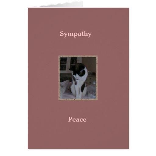 Gato, condolencia del mascota, paz felicitaciones