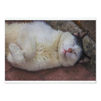 Gato contento que duerme en ella detrás invitación 12,7 x 17,8 cm