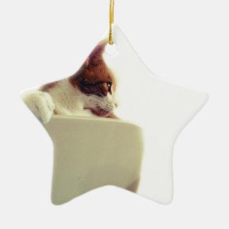 Gato cremoso adorno de cerámica en forma de estrella