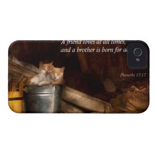 - Gato - cubo inspirado de diversión Case-Mate iPhone 4 Cárcasa