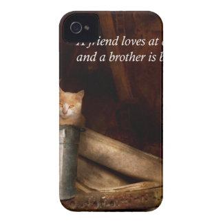 - Gato - cubo inspirado de diversión Case-Mate iPhone 4 Protector
