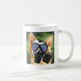 Gato de Apoco Taza