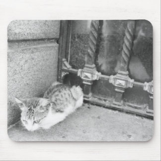 Gato de Argentina Mouse Pad