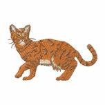 Gato de Bengala
