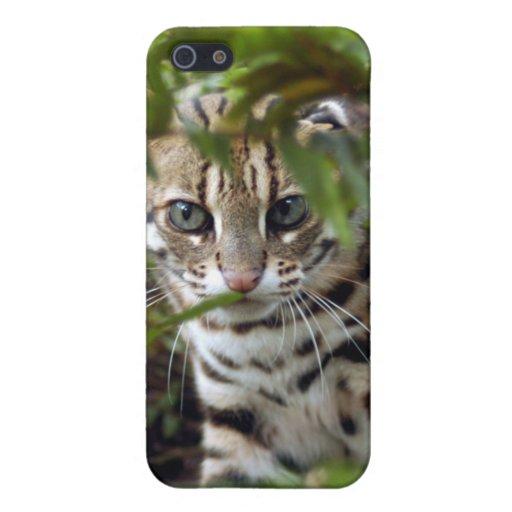 Gato de Bengala fresco y iPhone 5 Cárcasa