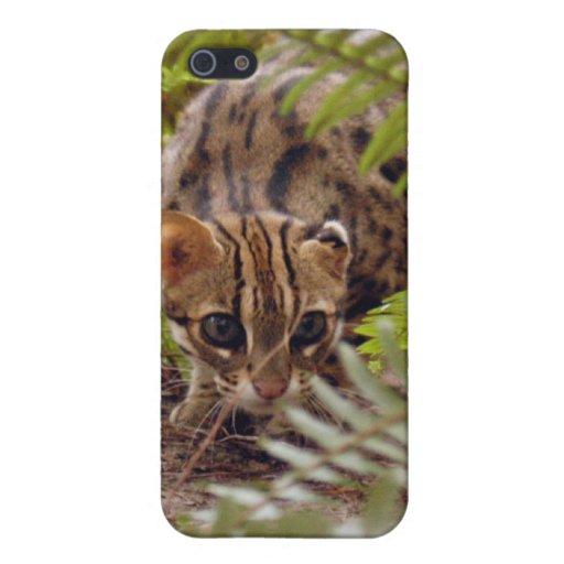 Gato de Bengala y iPhone 5 Funda