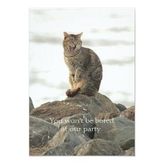 Gato de bostezo en la invitación de las rocas