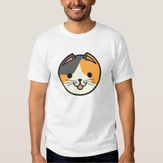 Gato de calicó de los gatos de la cesta playera
