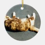 gato de calicó en el revestimiento lateral lejos ornamento para reyes magos