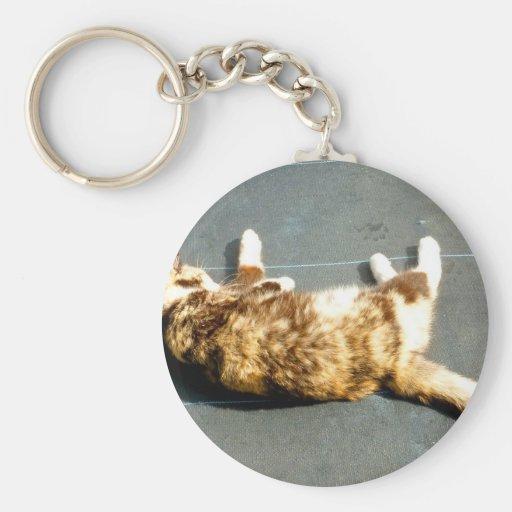 gato de calicó en el revestimiento lateral lejos llaveros personalizados