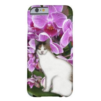 Gato de calicó funda para iPhone 6 barely there
