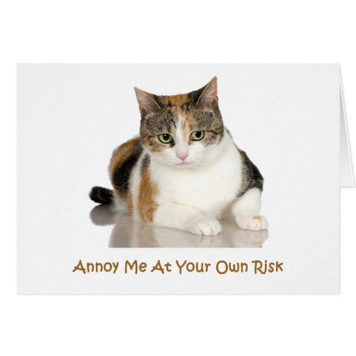 Gato de calicó: Molésteme con su propio riesgo Tarjeton