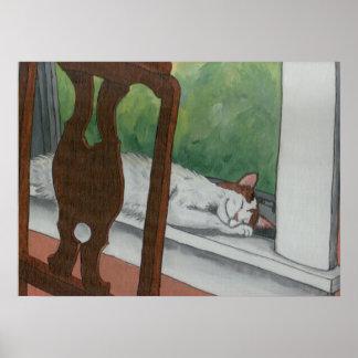 Gato de calicó Napping en ventana Posters
