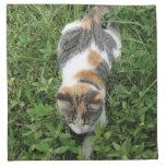Gato de calicó servilletas imprimidas