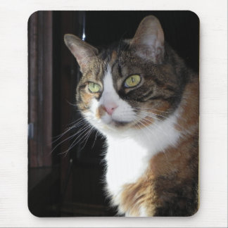 Gato de calicó alfombrilla de ratón