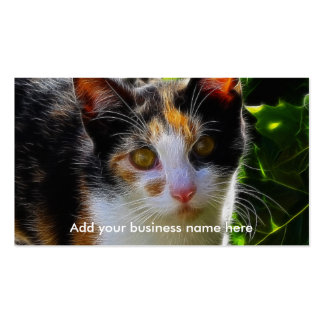 Gato de calicó tarjetas de visita