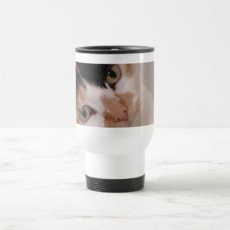 Gato de calicó taza térmica