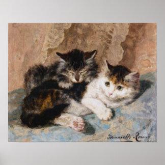 Gato de calicó y pintura gris de la bella arte del posters