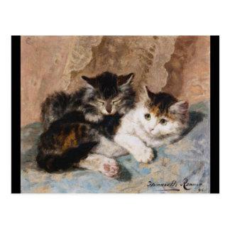 Gato de calicó y pintura gris de la bella arte del tarjeta postal
