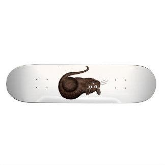 Gato de Chesire Skate Board