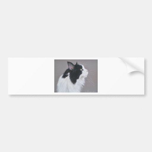 Gato de Coon blanco y negro de Maine Pegatina Para Auto