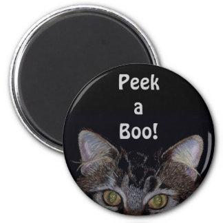 Gato de Coon bonito de Maine Imán Redondo 5 Cm