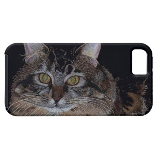 Gato de Coon bonito de Maine iPhone 5 Protectores