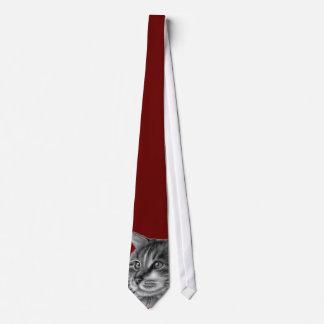 Gato de Coon de Maine Corbata