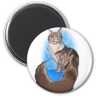 Gato de Coon de MAINE Imán Redondo 5 Cm
