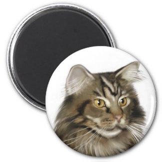 Gato de Coon negro de Maine del Tabby Imán Redondo 5 Cm