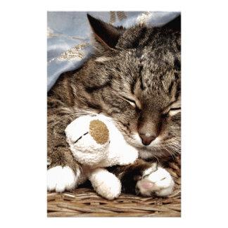 gato de la abrazo papeleria