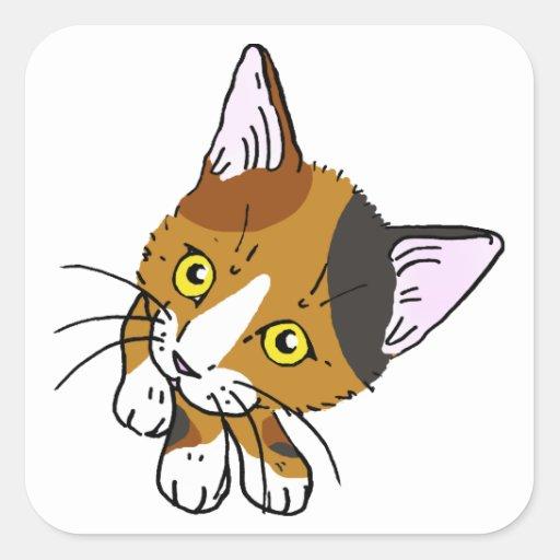 Gato de la concha (gato de la concha) pegatina cuadrada