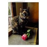 Gato de la concha y tarjeta de felicitación color