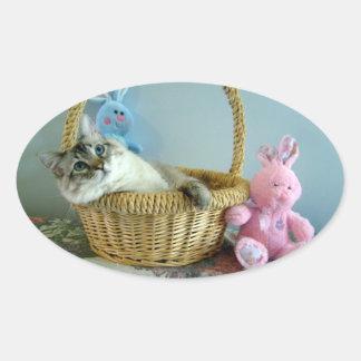 gato de la diversión en pegatinas del óvalo de la pegatina ovalada