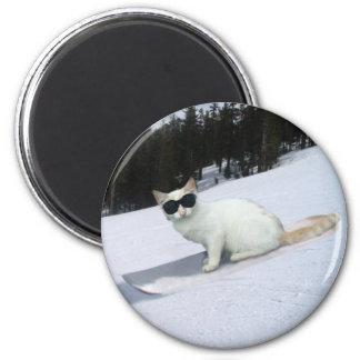 Gato de la diversión en un imán de la snowboard
