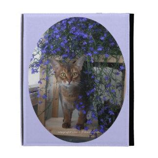 Gato de la flor