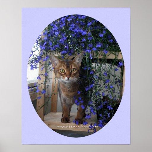 Gato de la flor impresiones