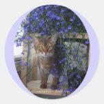 Gato de la flor (oval) etiqueta redonda