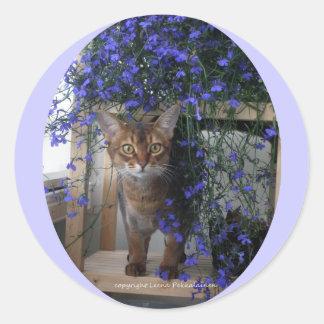 Gato de la flor oval etiqueta redonda