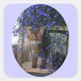 Gato de la flor oval calcomanías cuadradass personalizadas