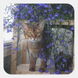 Gato de la flor calcomania cuadradas