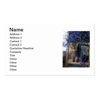 Gato de la flor tarjetas de visita