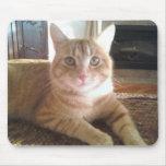 gato de la Isla de Man Alfombrilla De Ratones