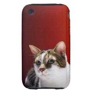 Gato de la Isla de Man iPhone 3 Tough Fundas