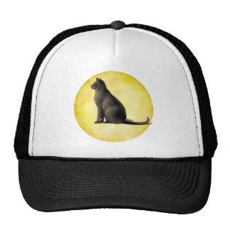 Gato de la luna gorra