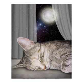 Gato de la luna póster